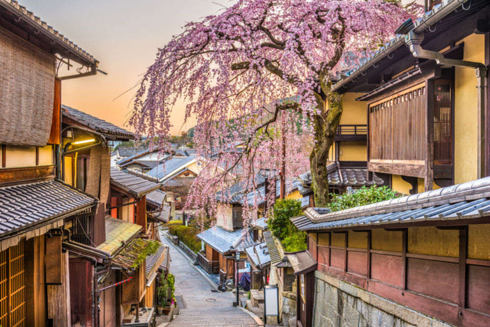 Trails that will make Japan your new love