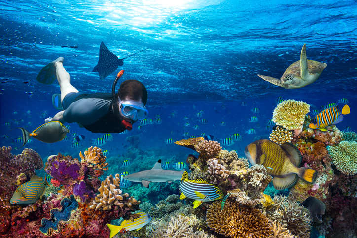 Up for some water fun? Head to the best scuba diving destinations in India