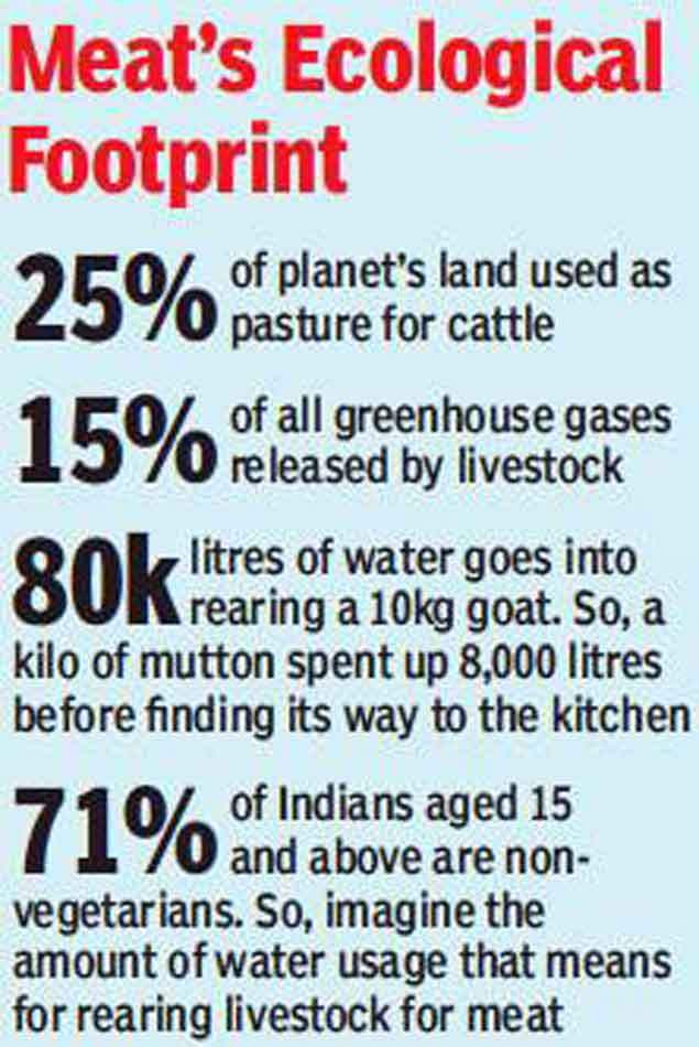 Maneka Gandhi wants animal meat out  Is lab meat the future