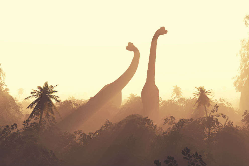 Secret uncovered: Gujarat houses one of the world's largest dinosaur fossil sites