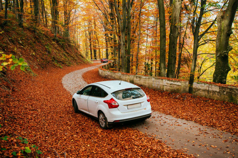 Autumn goals: Places you should not miss visiting when it's autumn in India