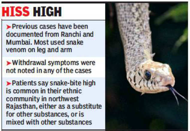 Deadly cobra venom provides an extended high to addicts: Study