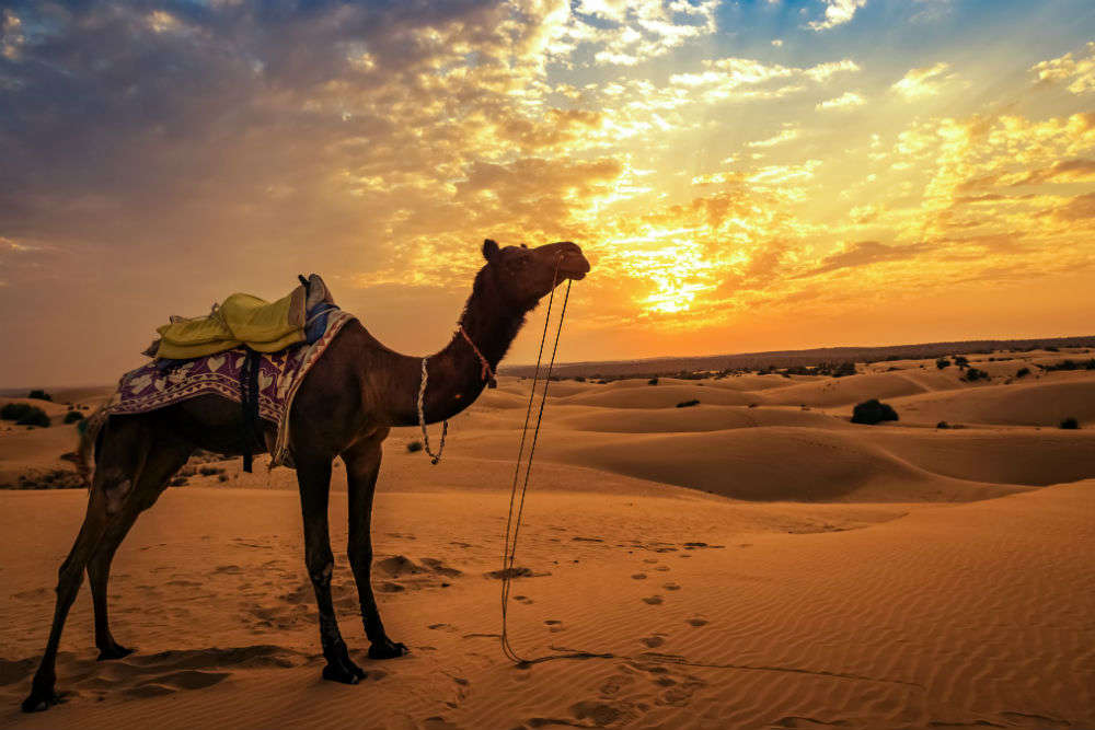 6 interesting experiences that await you in Jaisalmer
