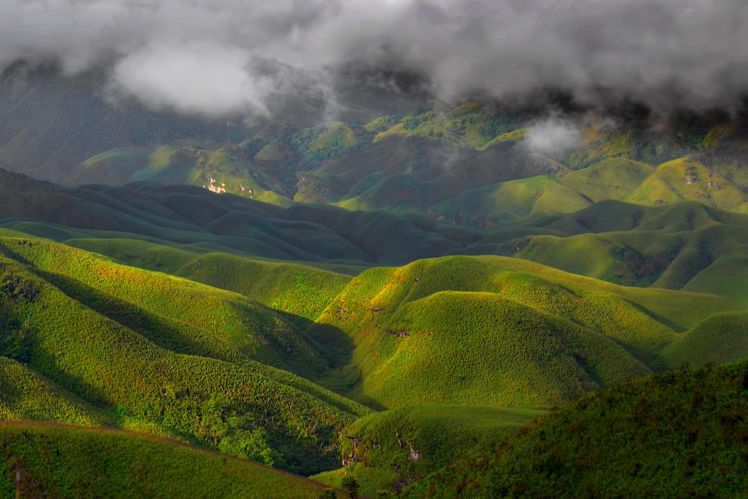 Dzukou Valley Festival of Nagaland is set to begin this month