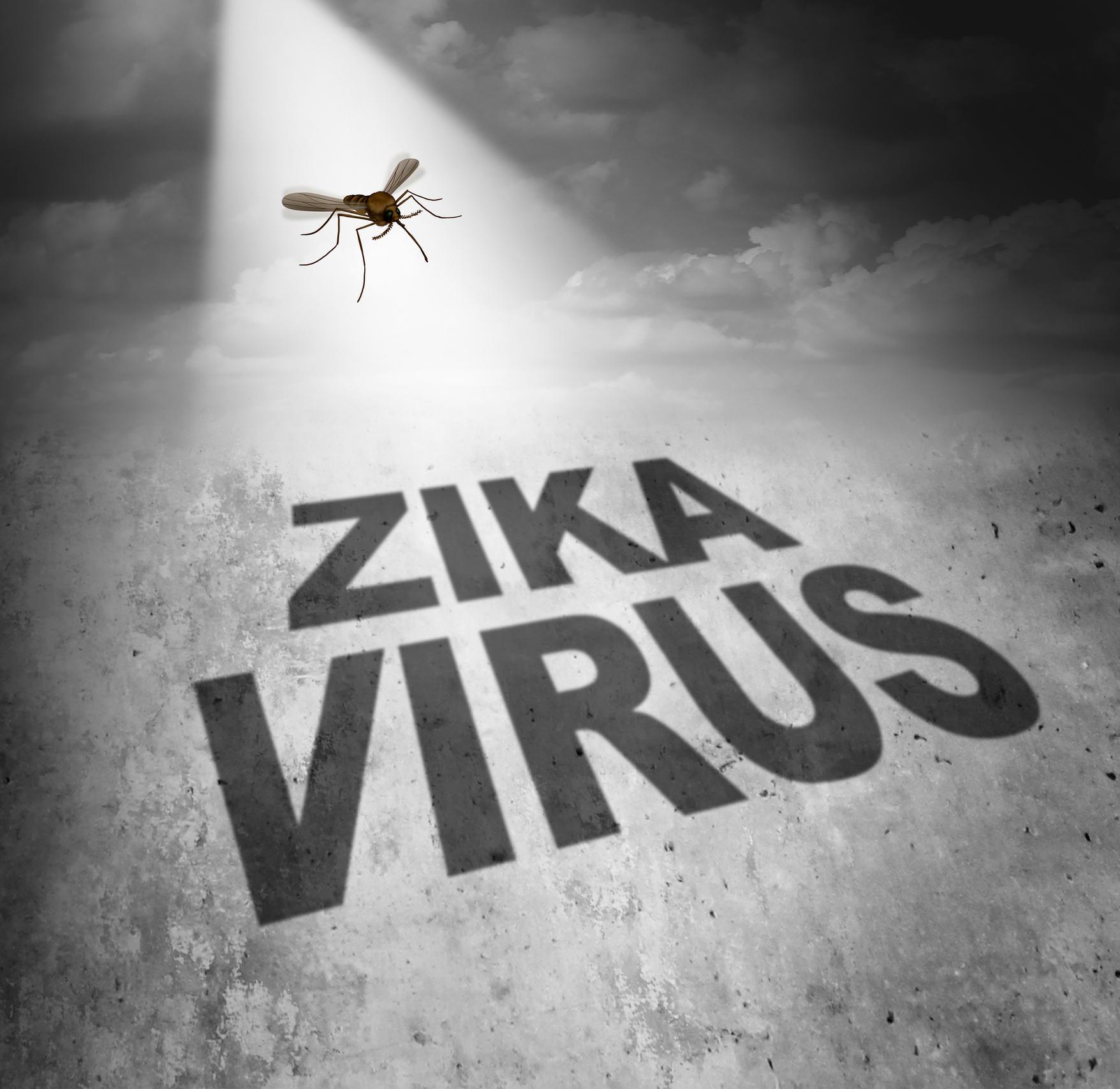 Travel advisory—Jaipur on alert as Zika Virus hits it