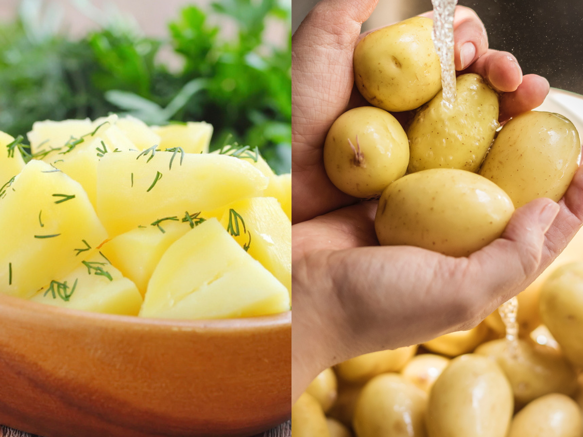 is the potato diet good for you