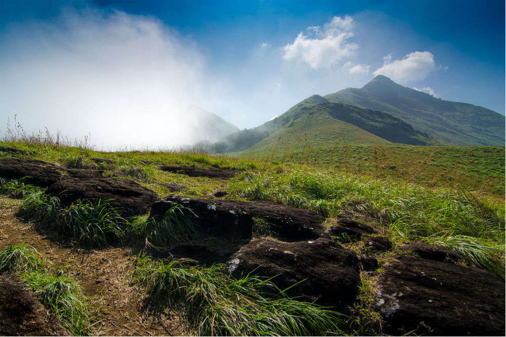 Chembra peak in Wayanad is now ready to receive tourists