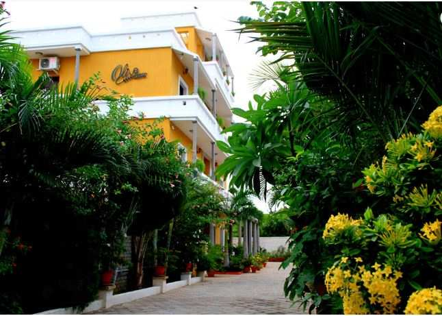 Hotels in Auroville for a memorable trip