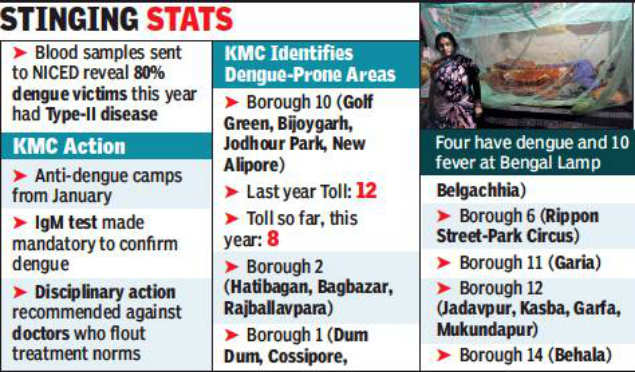 Kolkata: This year, 80% had deadly dengue-II | Kolkata News