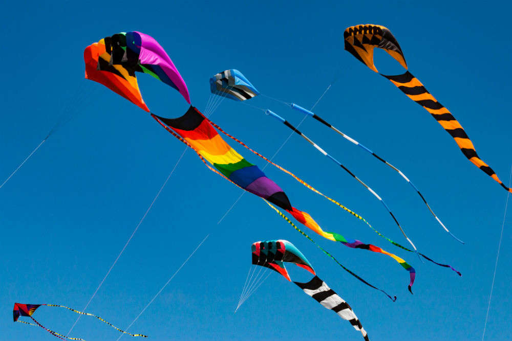 International Kite Festival 2019 begins in Ahmedabad with colourful, unique kites