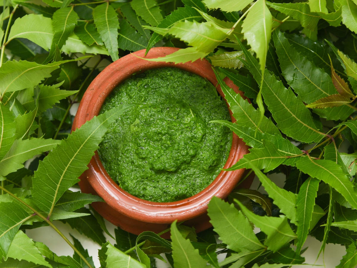 Neem Cure Cancer Can Neem Help Prevent Cancer Neem Leaves For Cancer Treatment