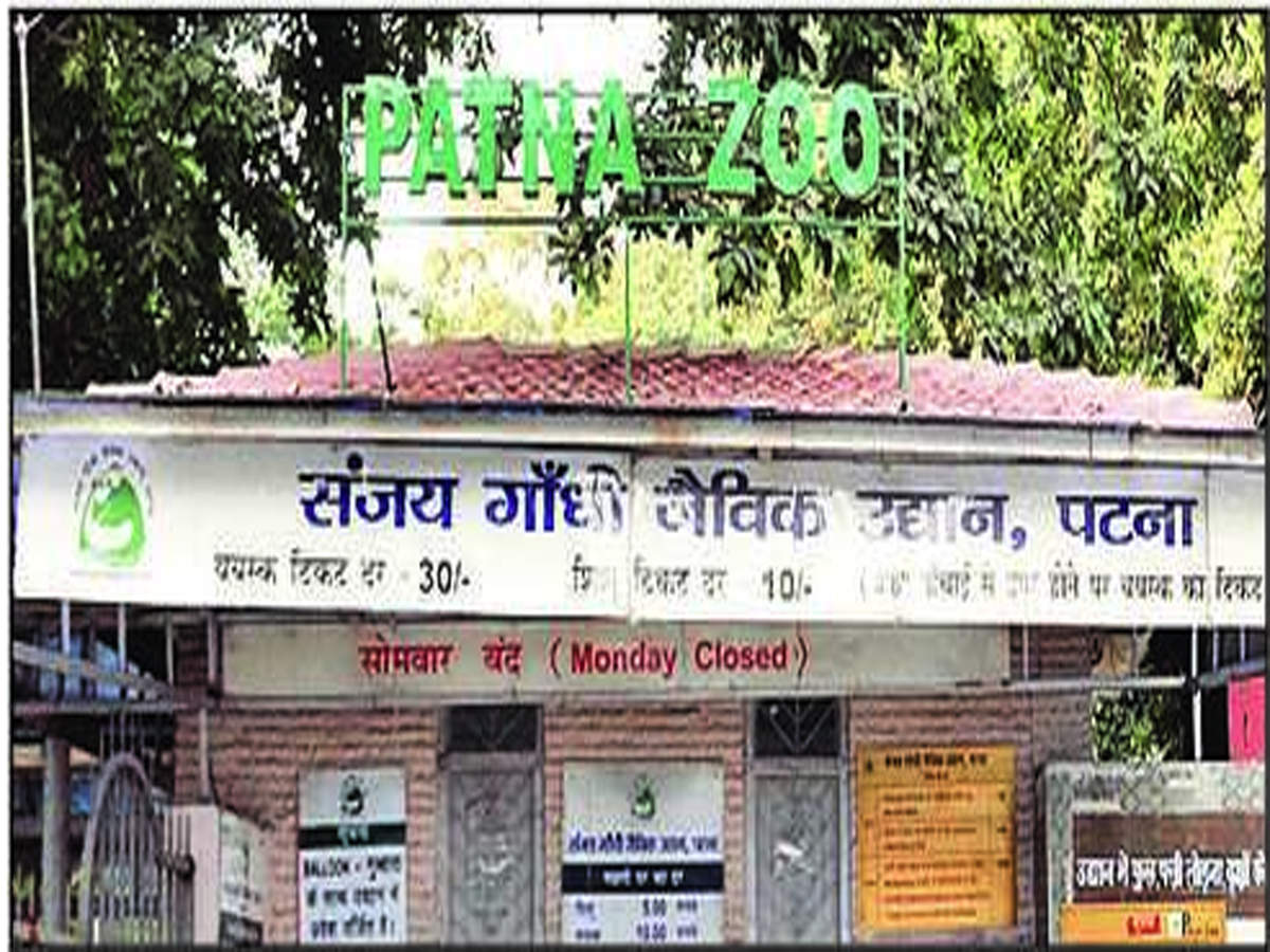 Two new facilities at Patna zoo this month | Patna News - Times of India