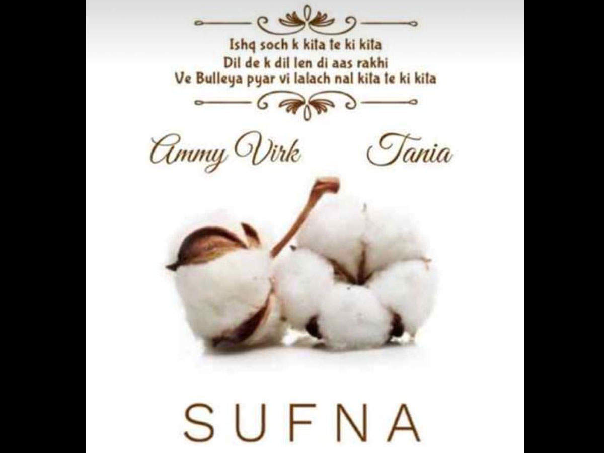 Sufna: Ammy Virk to release a love tale on 2020's Valentine's Day