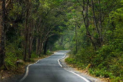 A new route to bring Jim Corbett National Park closer to Delhi-NCR residents