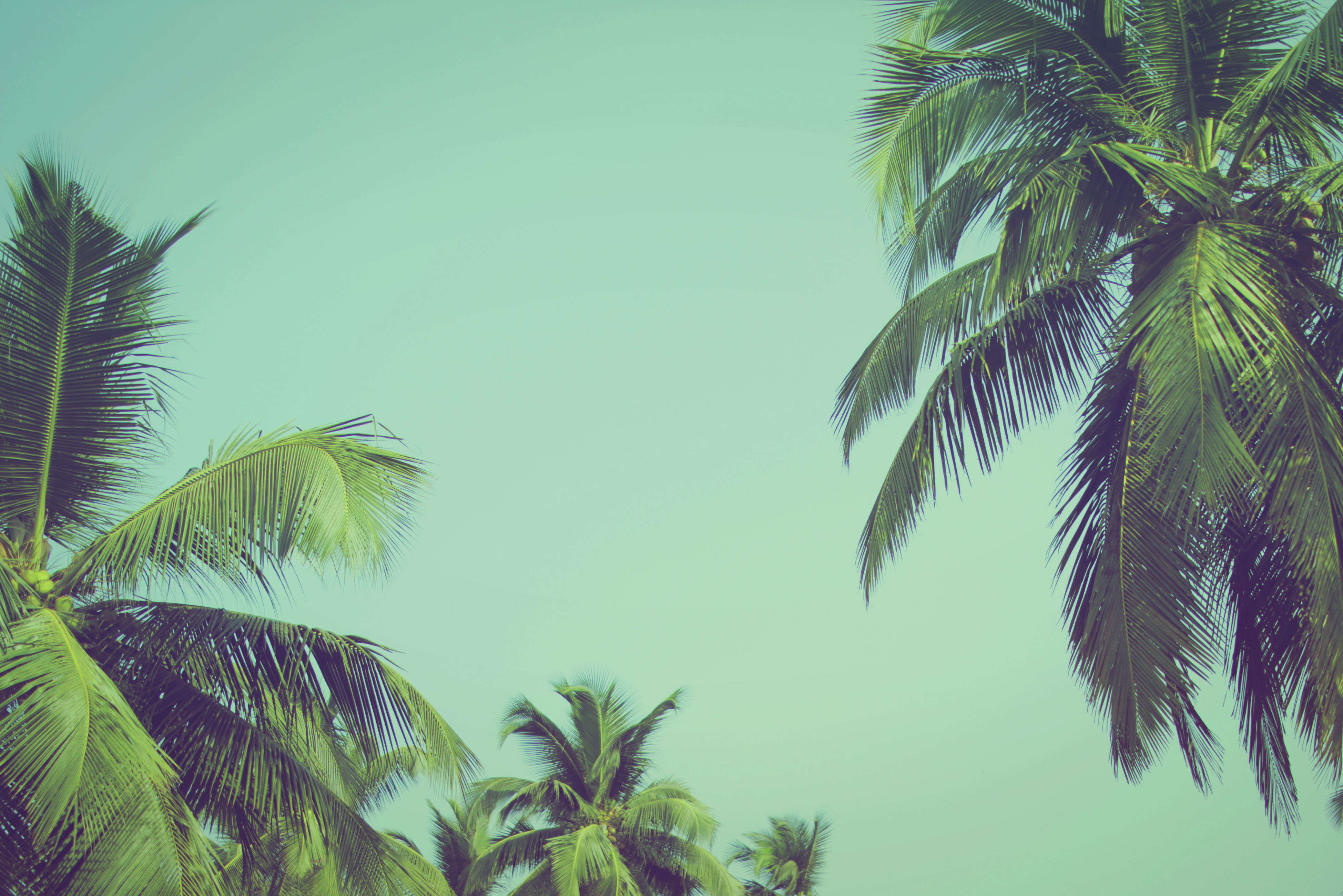 Surviving summer in India – tricks and tips