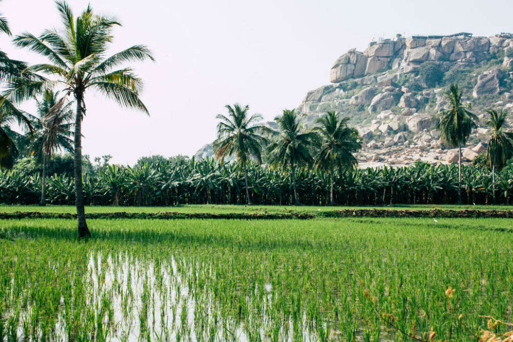 Hampi in pictures: the land of goddess Pampa aka Parvati, and more