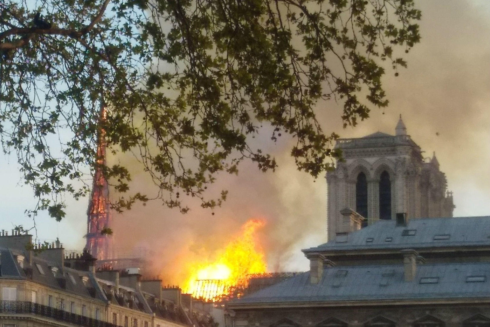 Notre Dame fire—world reacts as Our Lady of Paris burns for nine hours