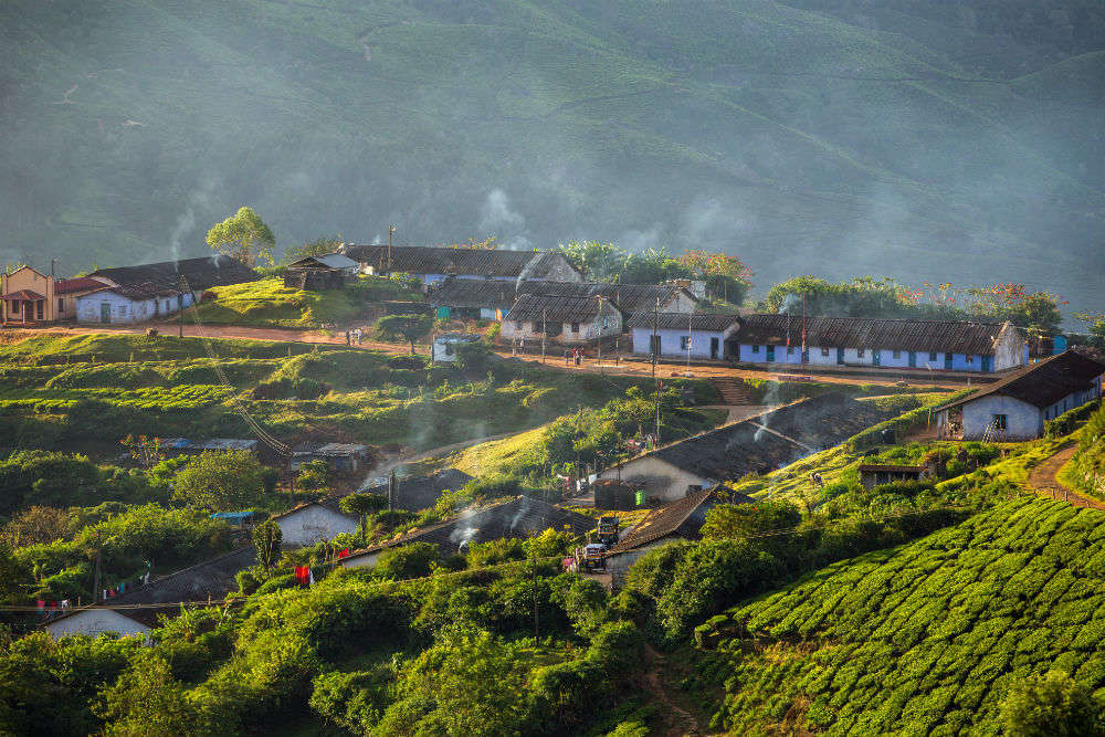 Get enchanted in Munnar-Thekkady-Kumarakom with IRCTC's 6D/5N package at INR 28475