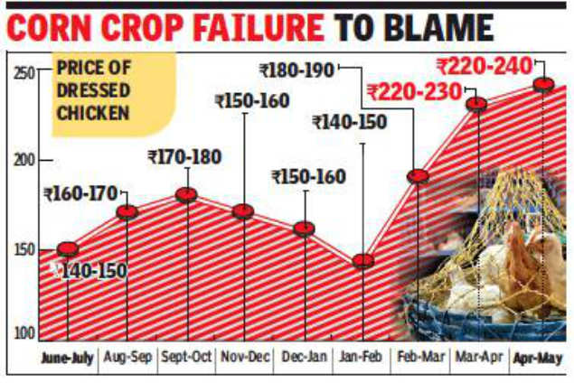 Chicken prices go through the roof in Kolkata | Kolkata News