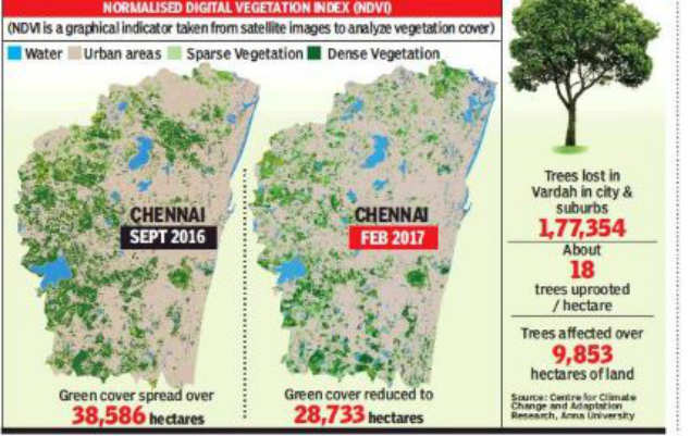 Vardah cost Chennai 67,000 tonnes of carbon stored in 1 7 lakh trees