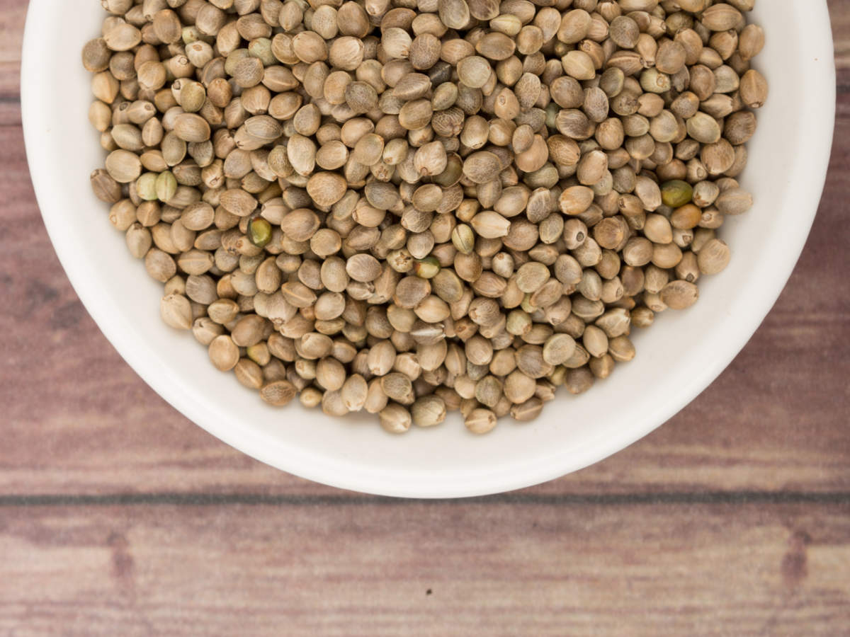 What Are Hemp Seeds And Its Health Benefits Times Of India