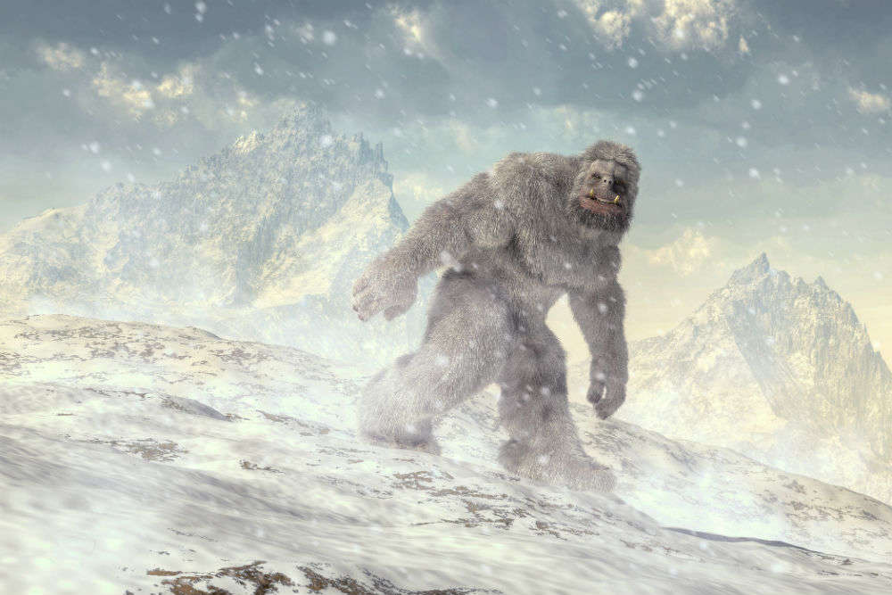 Indian Army's said Yeti sighting might be the Rosetta Stone of Yeti mysteries