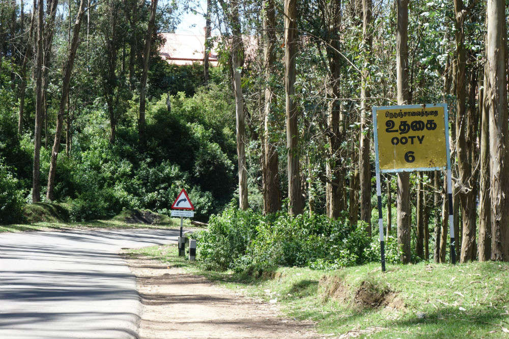 Beat the heat in Southern hills with IRCTC's 6N/7D Mysore-Ooty-Coorg package at INR 31900
