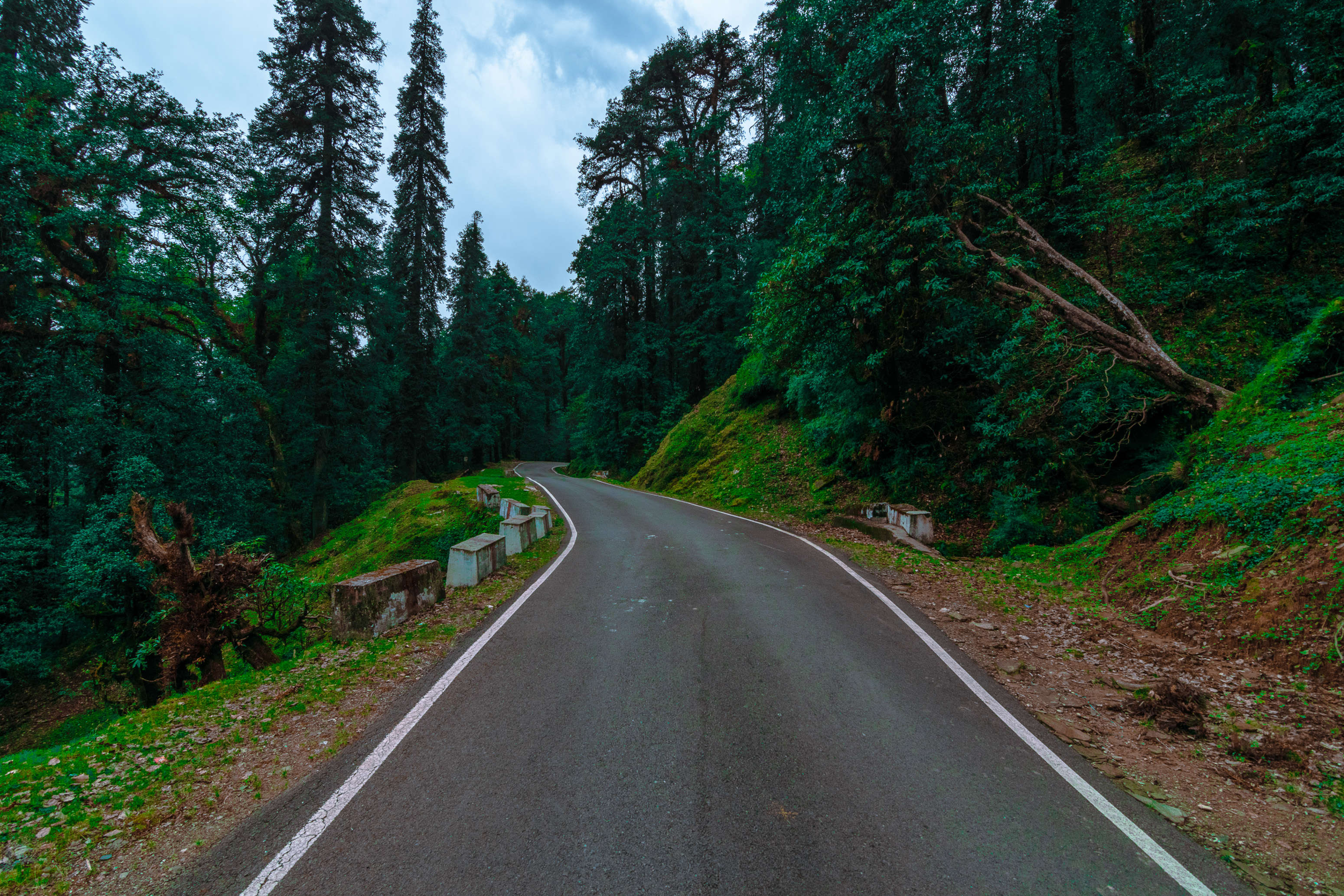 This is what makes Ranikhet a charming budget travel destination