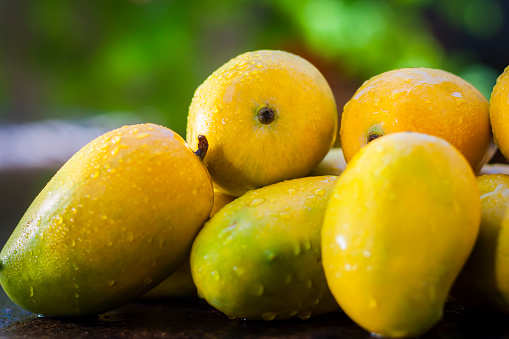 Delhi is gearing up to host the much-awaited 31st Mango Festival