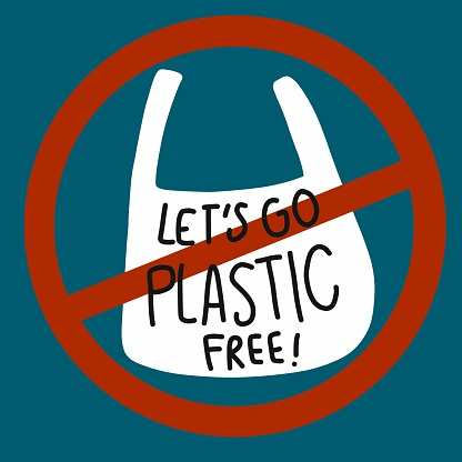 Dzukou Valley is turning into a 'plastic free zone' on World Environment Day