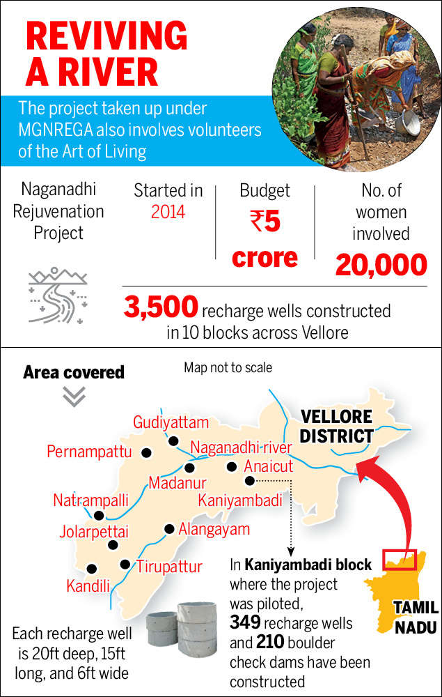How 20,000 women in Vellore got together to save a dying river