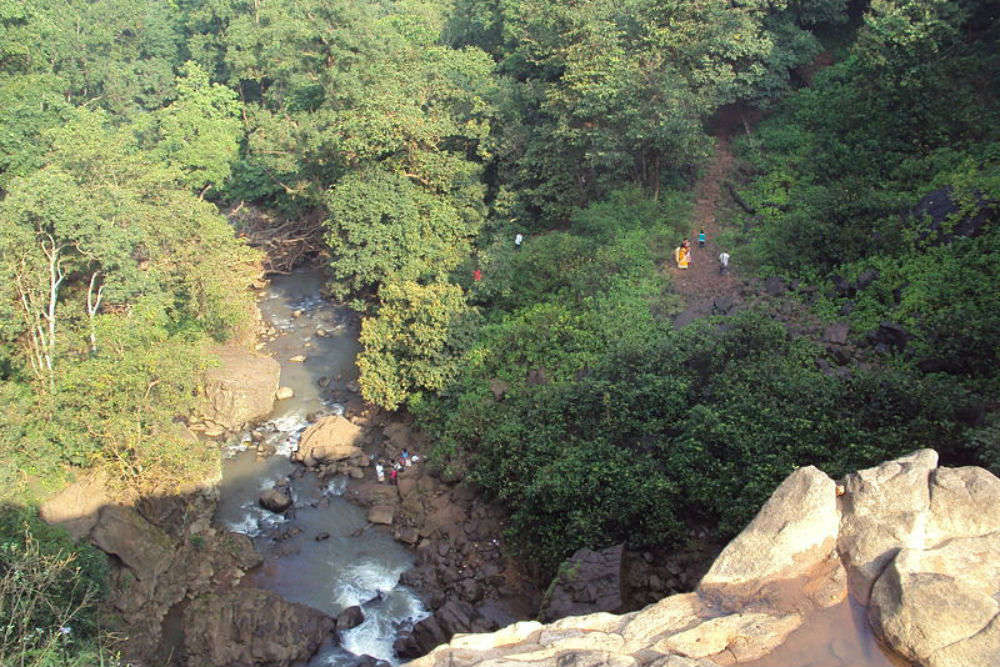 An oasis amid a beautiful, forested landscape - Kapildhara Waterfall in Amarkantak