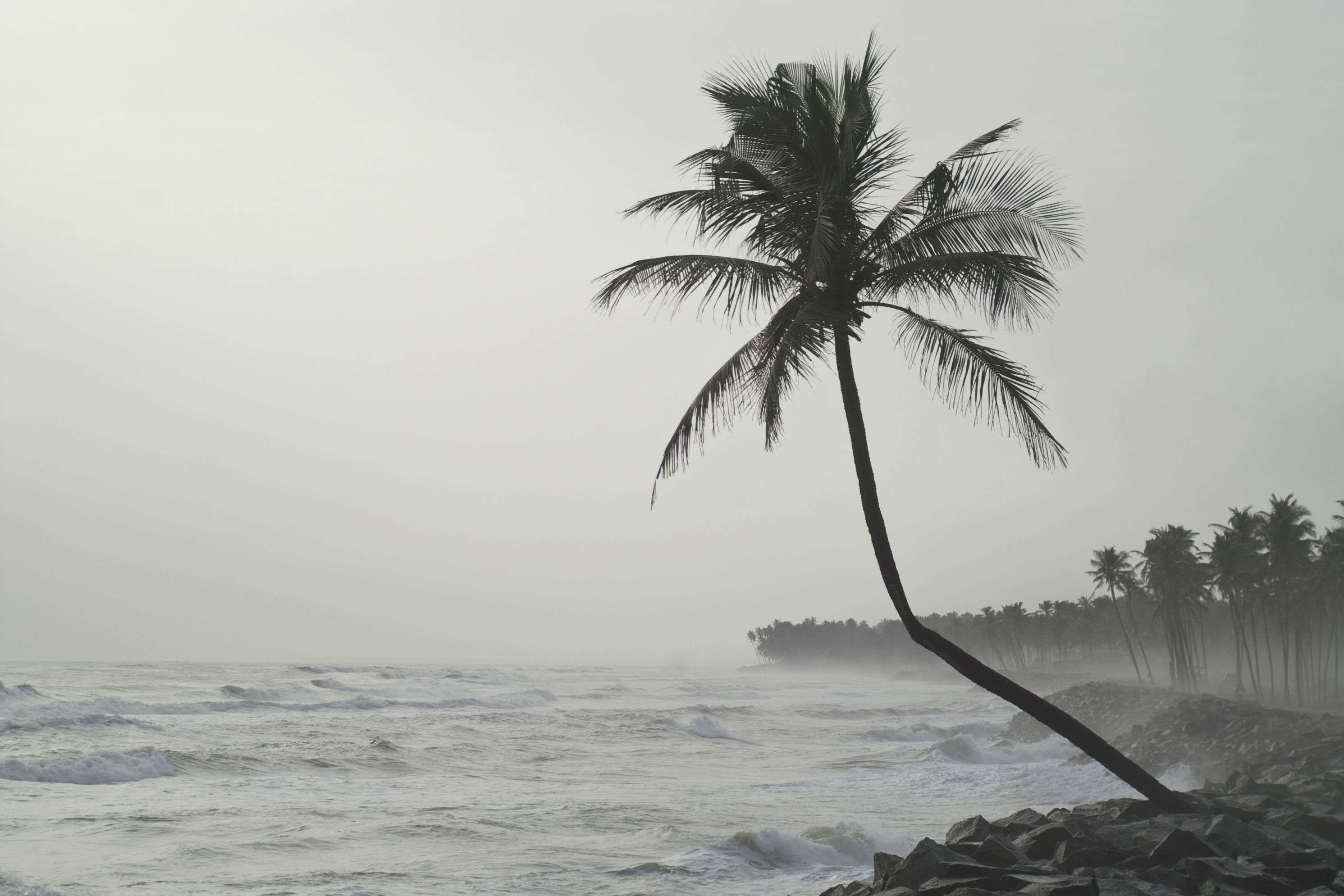 Why experiencing monsoon in Kerala is a must?