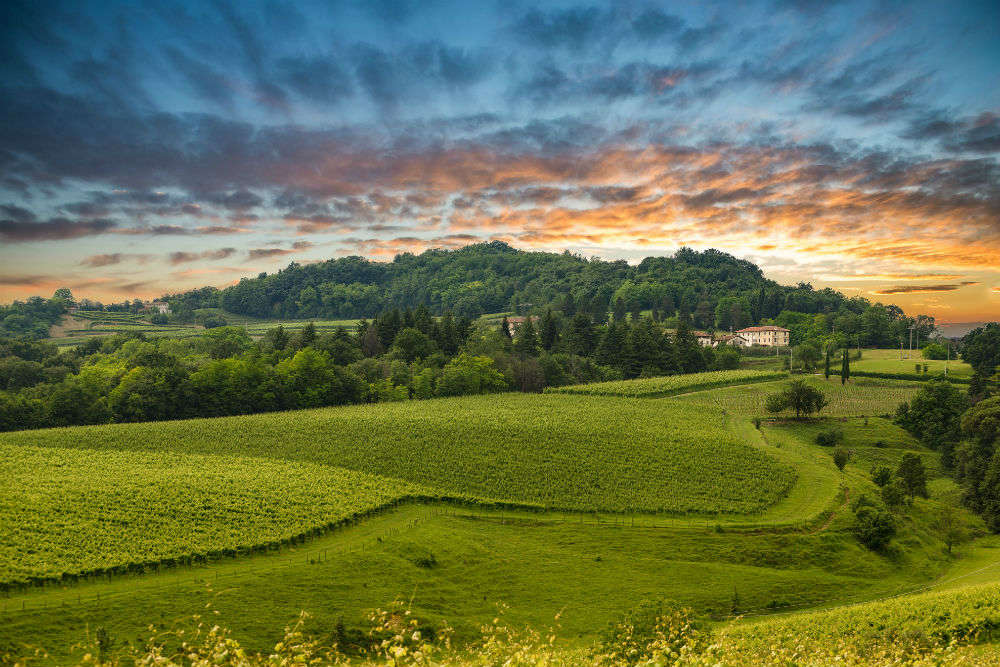 Italy's Prosecco Hills are included in UNESCO World Heritage Sites list