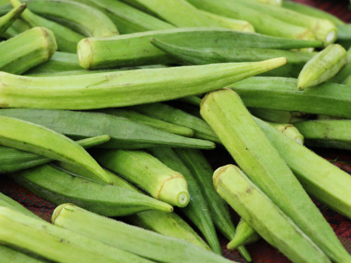 okra vegetable