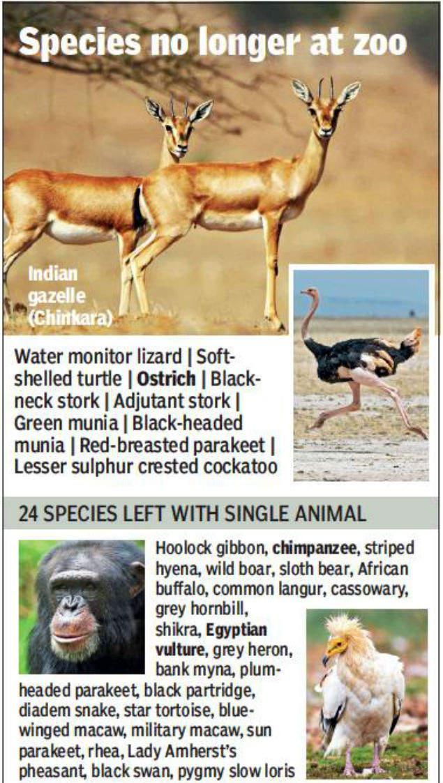 Delhi zoo has lost 10 species: Letter to PM Narendra Modi
