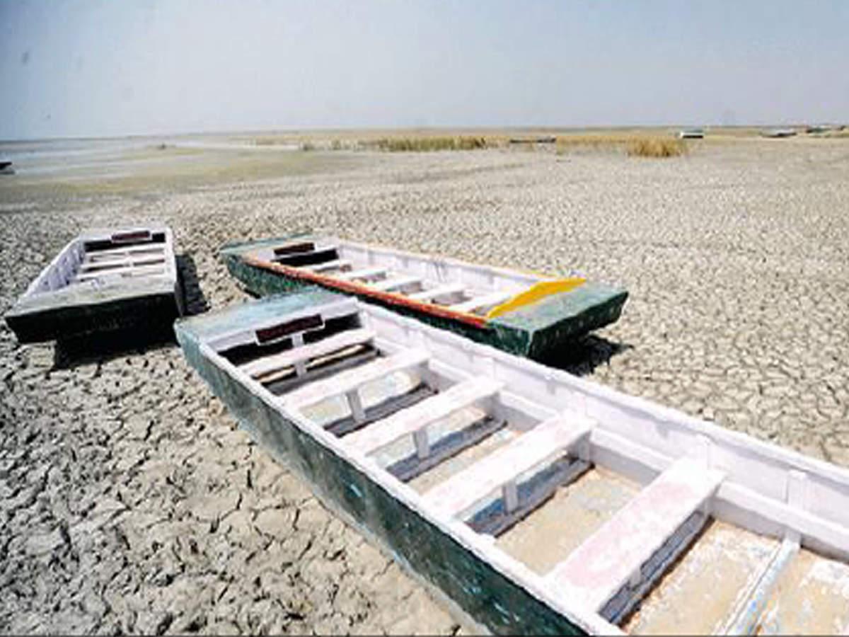 Nalsarovar, Thol finally get water inflows   Ahmedabad News