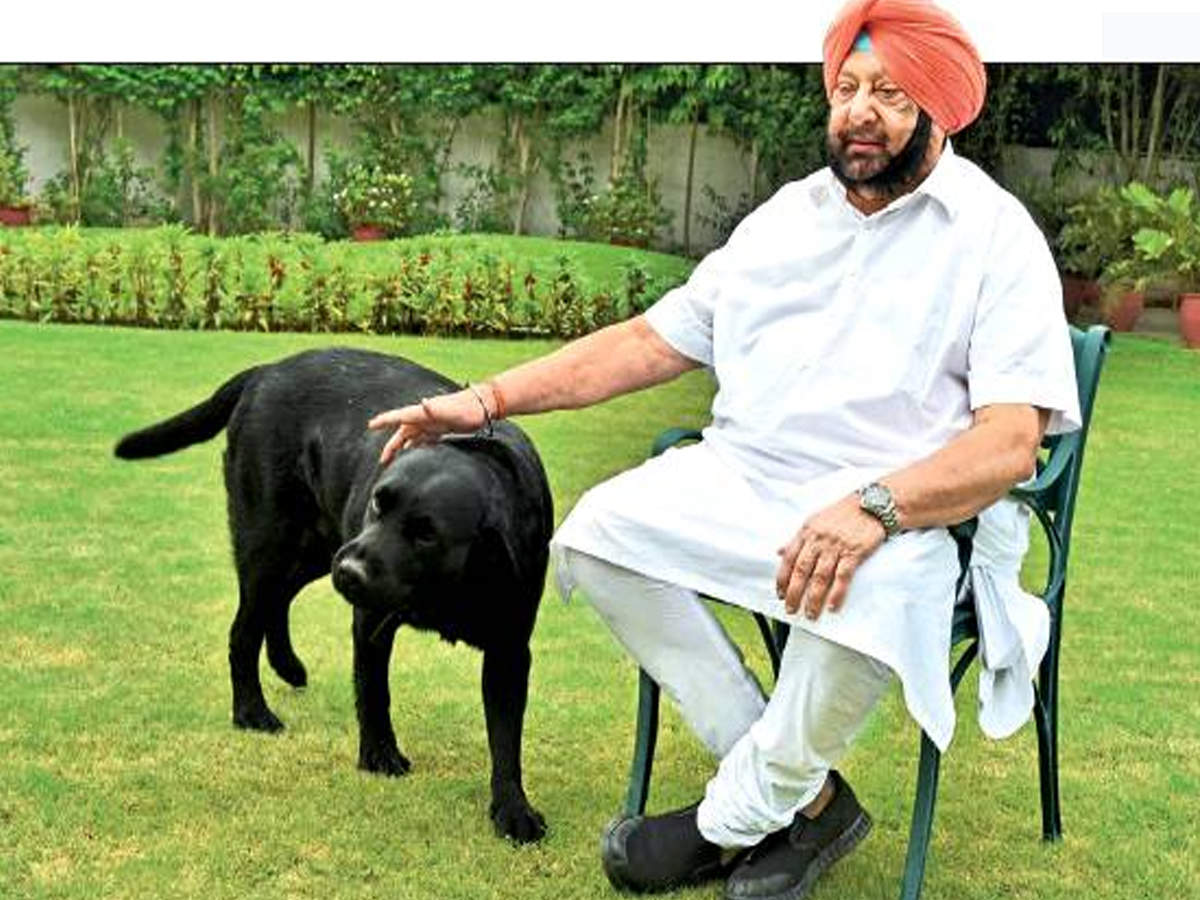 Punjab being targeted as we're affluent: Punjab CM Amarinder Singh