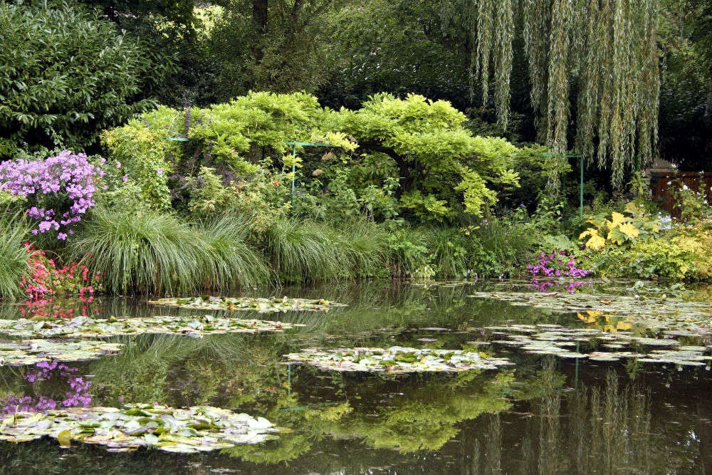 Monet's Pond is a hidden gem of Japan, find out why