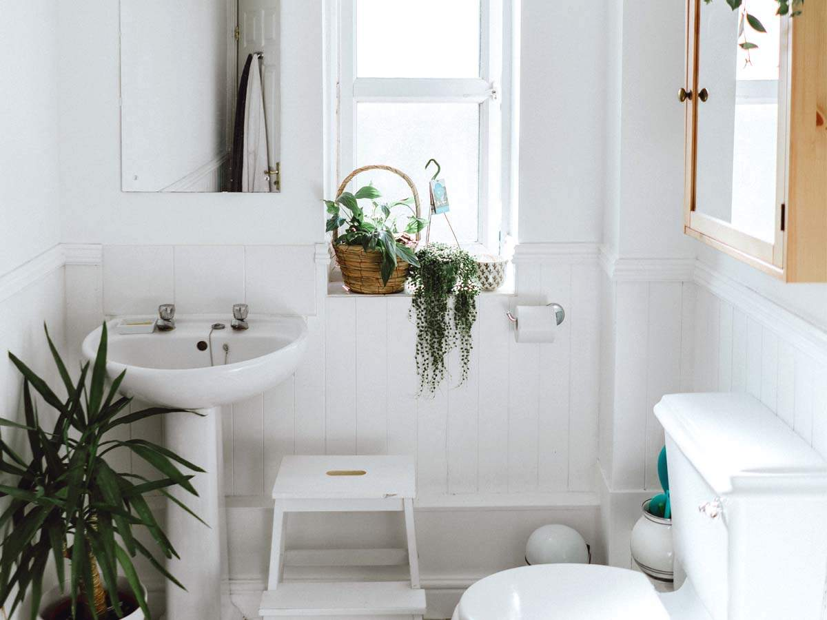 Bathroom Design Essentials To Beautify Your Bathroom Most Searched Products Times Of India