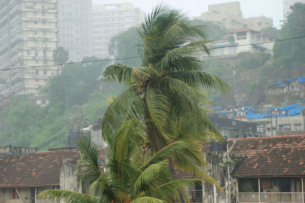 IMD issues orange alert in Mumbai due to ongoing rains