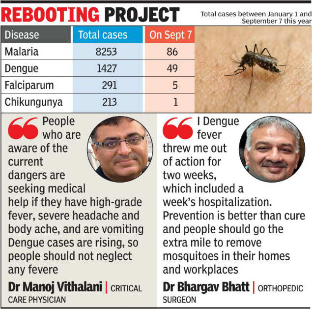 49 new dengue cases reported in a day in Gujarat | Ahmedabad
