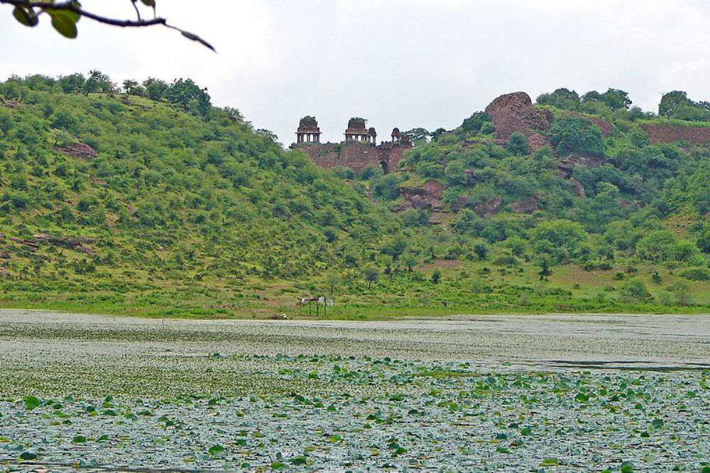 What secret treasures is Timangarh fort hiding in its womb?