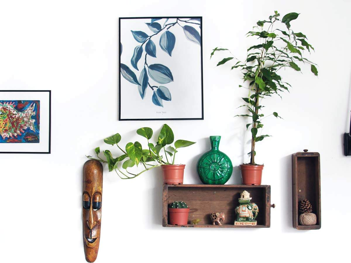 Wall Decor Ideas Inexpensive Accessories To Refresh Your Space Most Searched Products Times Of India
