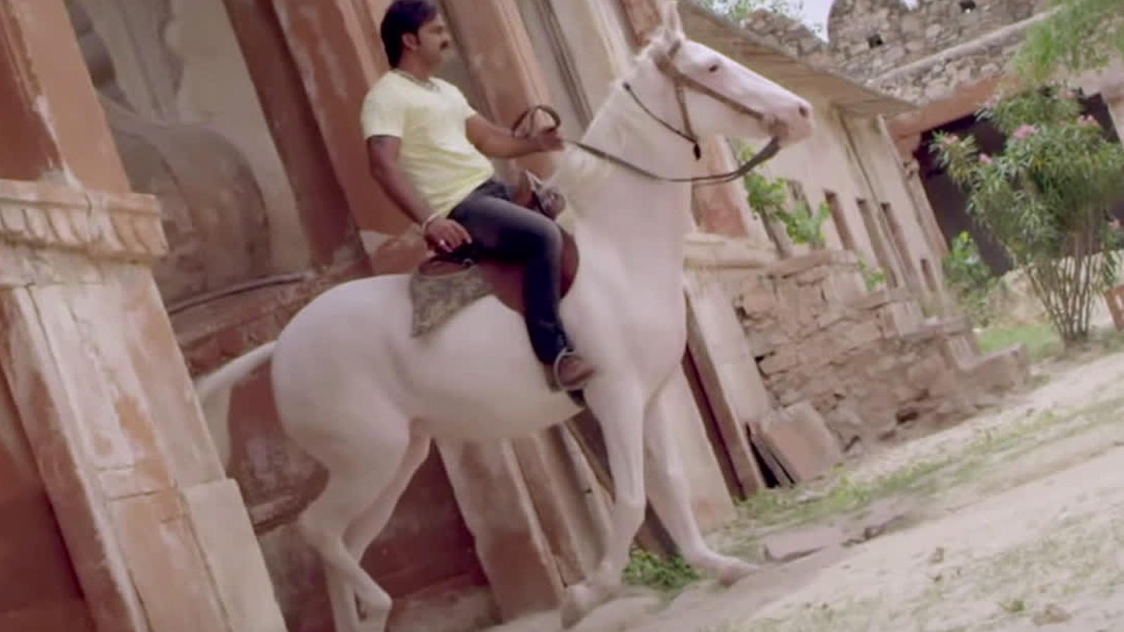 bhojpuri-actor-pawan-singhs-new-song-mere-marad-mahoday-ji-from-movie-sher-singh-is-out