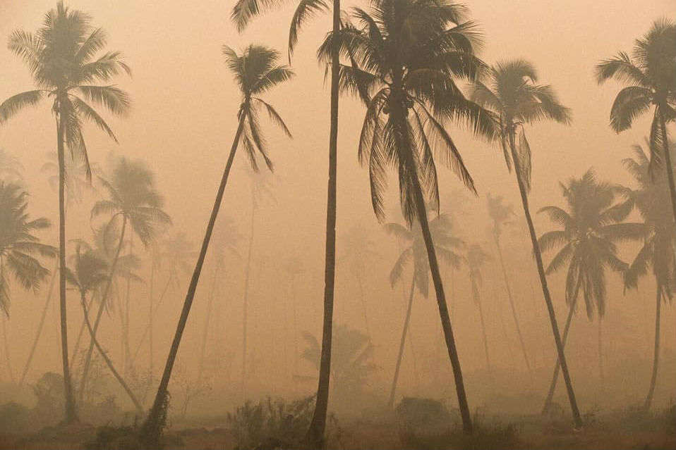 Indonesian forest fire catastrophe has an impact in Southeast Asia