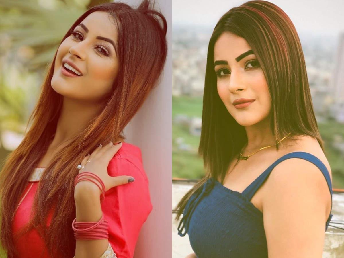 Bigg Boss 13 Contestant Shehnaaz Gill Profile Hot Photos