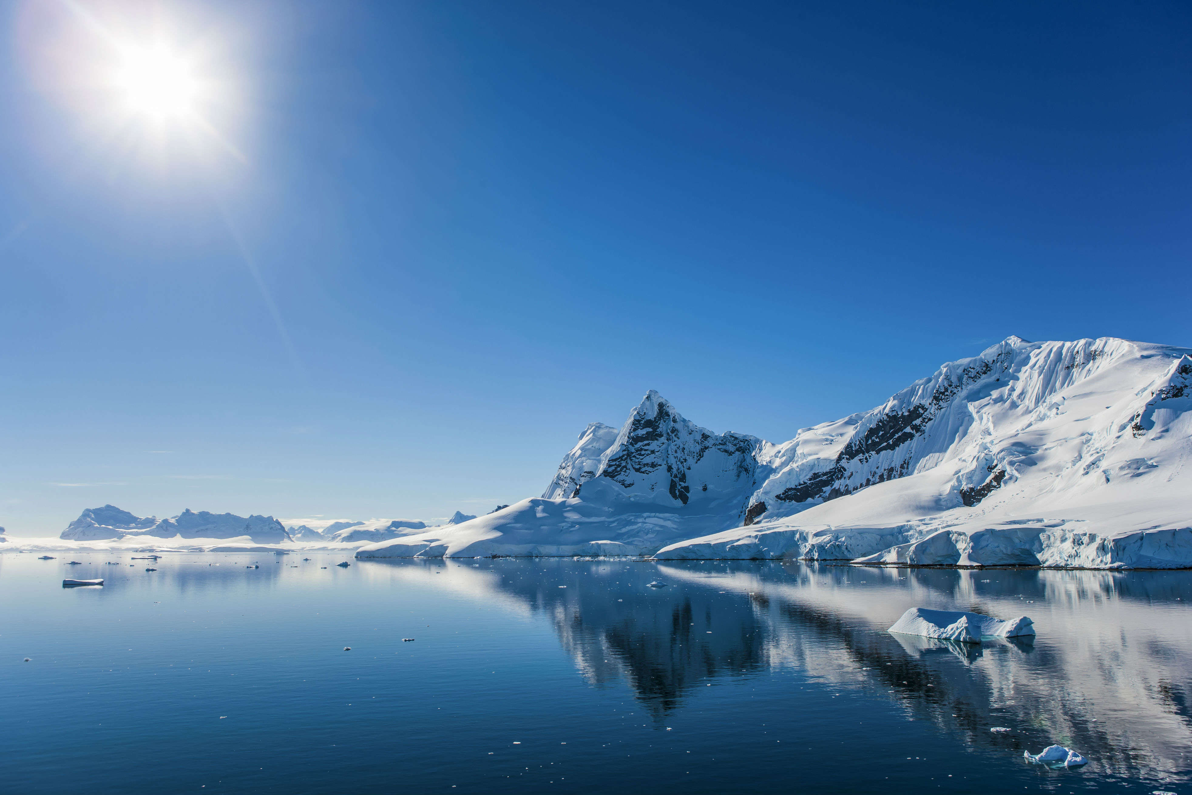 Australia brings hope for a new marine sanctuary in the Antarctic