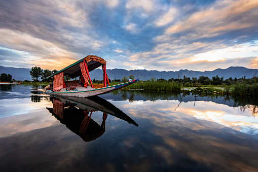 Dal Lake and its surrounding areas to be declared eco-sensitive zone soon