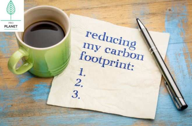 Making your travel eco-friendly: tips that are practical and practicable